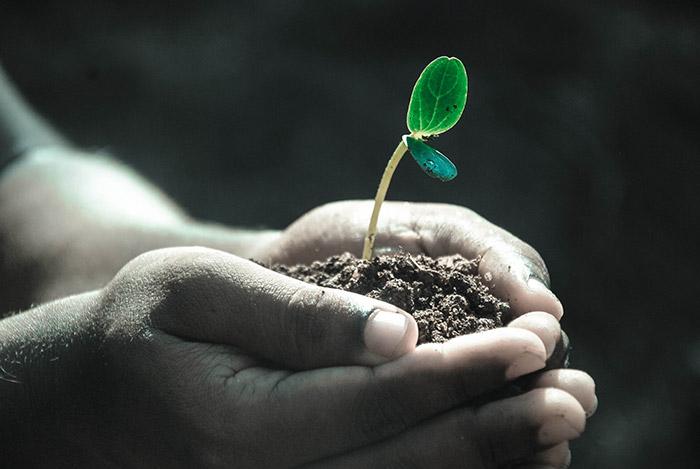 «agriculteur»